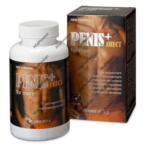 Penis+ Erect